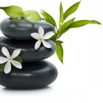 homeopatika wellness
